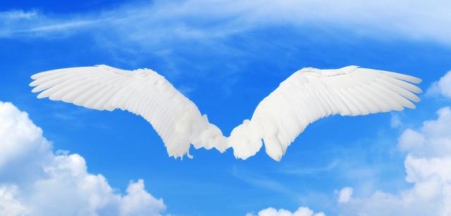 ヒルクライムで翼が生える